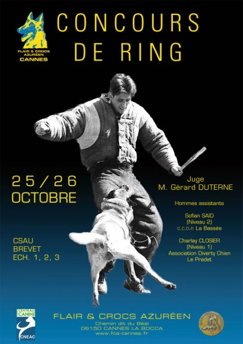 Affiche-concours-ring-2014